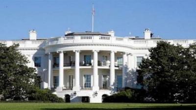 Coronavirus: Democratic White House hope