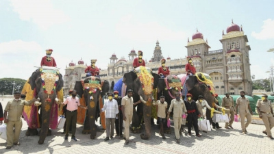 Mysuru gears up for mini 'jamboo savari'