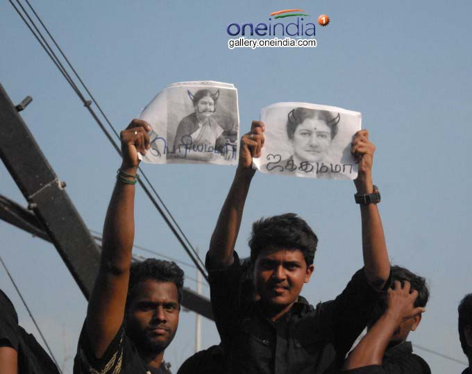 Massive Protests In Support Of Jallikattu At Marina Beach