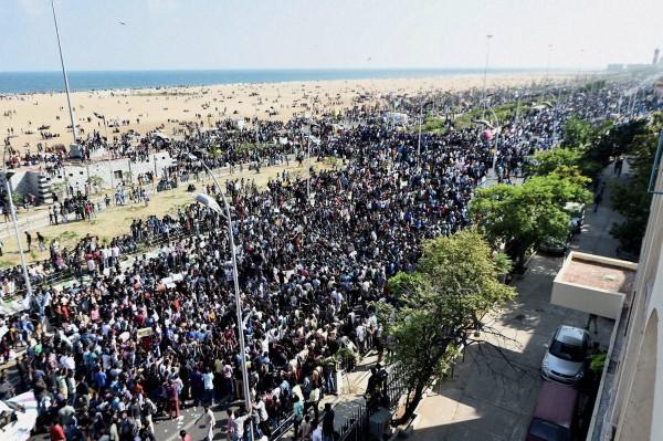 First Anniversary Of Marina Revolution For Jallikattu