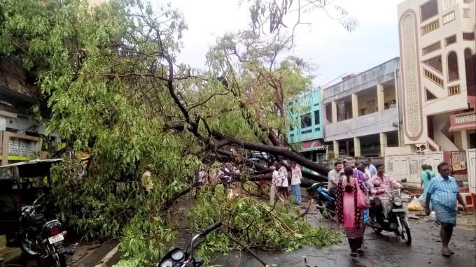 Heavy Rains Lash Coastal And Godavari Districts In AP