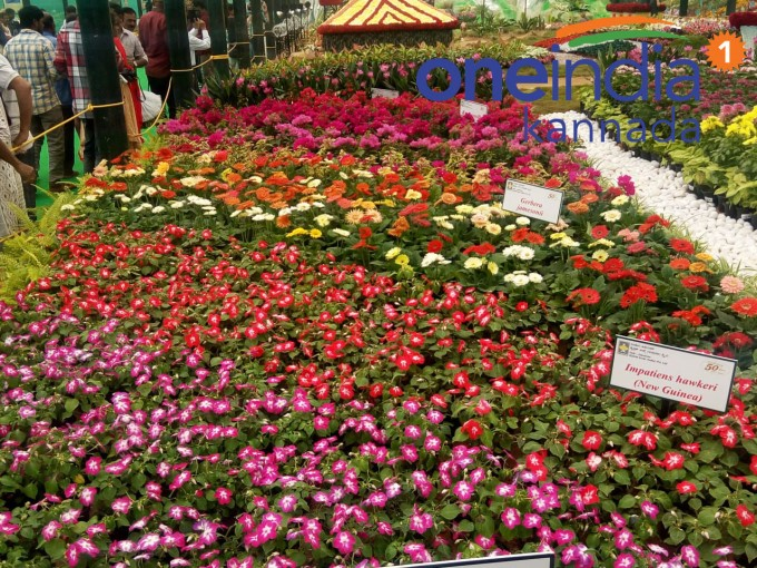 Lalbagh Flower Show 2018: Dedicated To Armed Forces