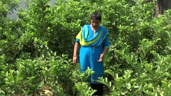Puducherry Woman Farmer Has Been Honored With Doctorate