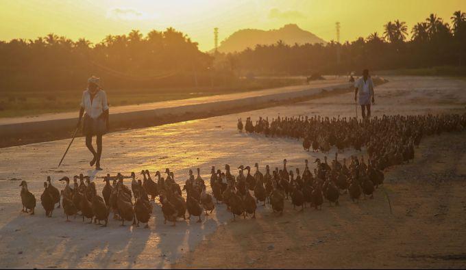 News In Photos (17 November 2019) | Photos Of Top News Today - Oneindia Gallery