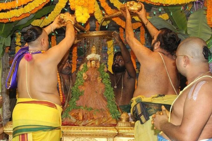 வசந்த உற்சவம்.. சிறப்பு அலங்காரத்தில் எழுந்தருளிய பத்மாவதி தாயார்