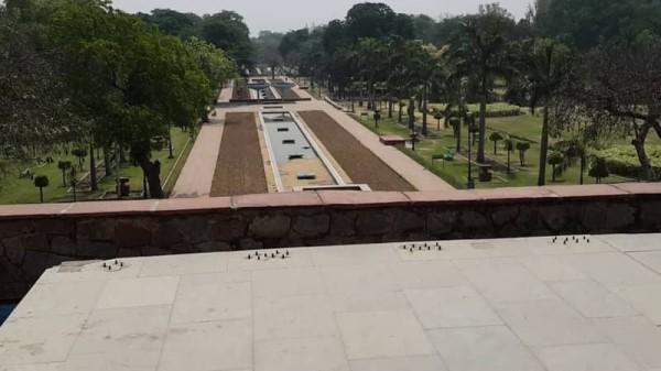 दिल्ली में आज से खुले पार्क और गार्डन, देखिए, पहले दिन कैसा रहा नजारा