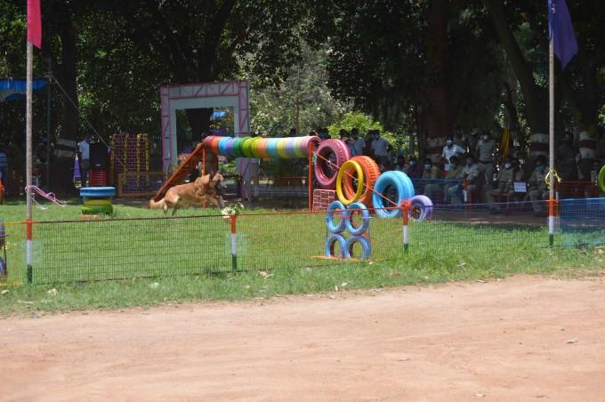 ಬೆಂಗಳೂರಲ್ಲಿ ಶ್ವಾನದಳ ಚಟುವಟಿಕೆಗಾಗಿ ಉದ್ಯಾನವನ