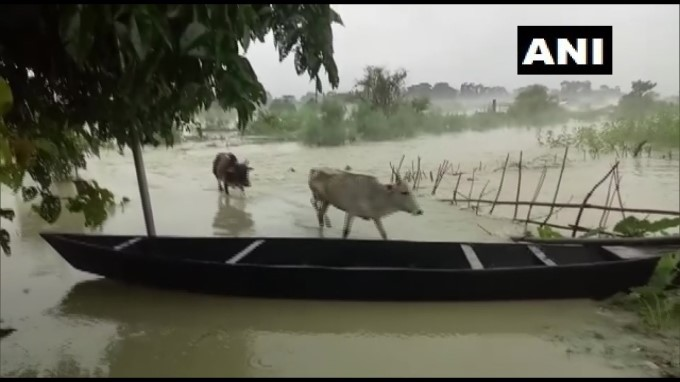 Due To Heavy Rainfall Water Level Of Brahmaputra River Continues To Rise