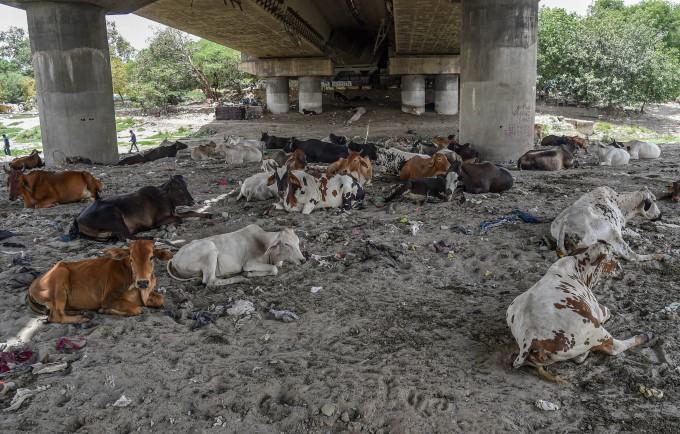 Life During Lockdown 5.0 In New Delhi