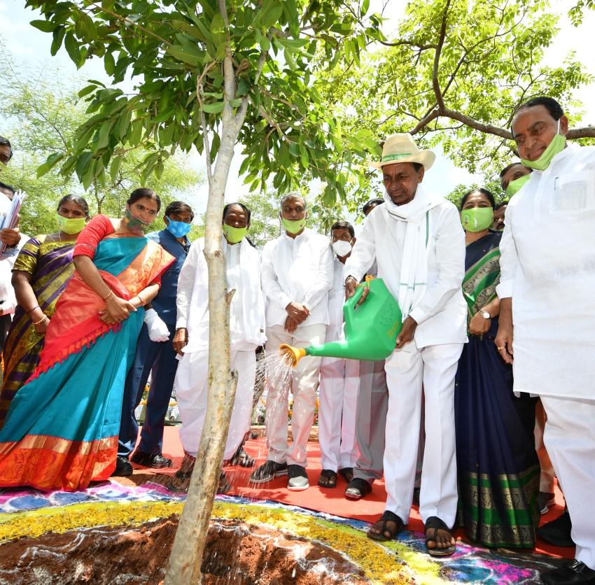 CM KCR Inagurated Telanganaku Harita Haram (6th Phase)  Programe At Narsapur Urban Park