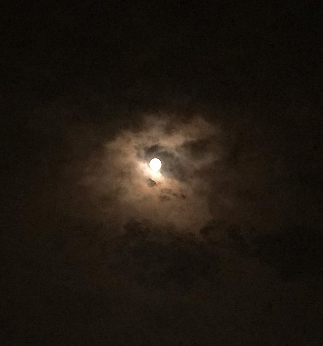 Second Penumbral Lunar Eclipse 2020