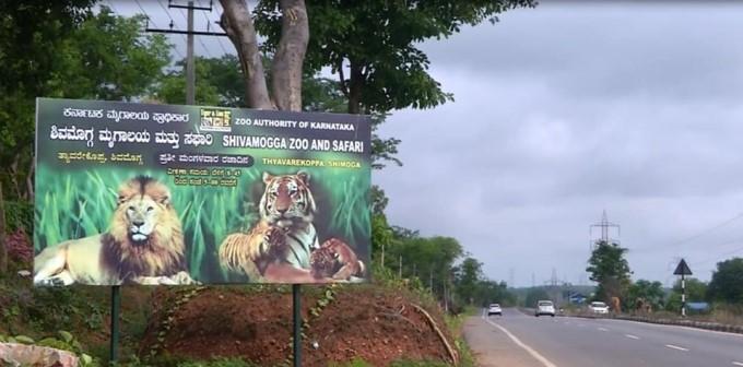 Shimoga Zoo And Safari In Tyavarekoppa Reopened