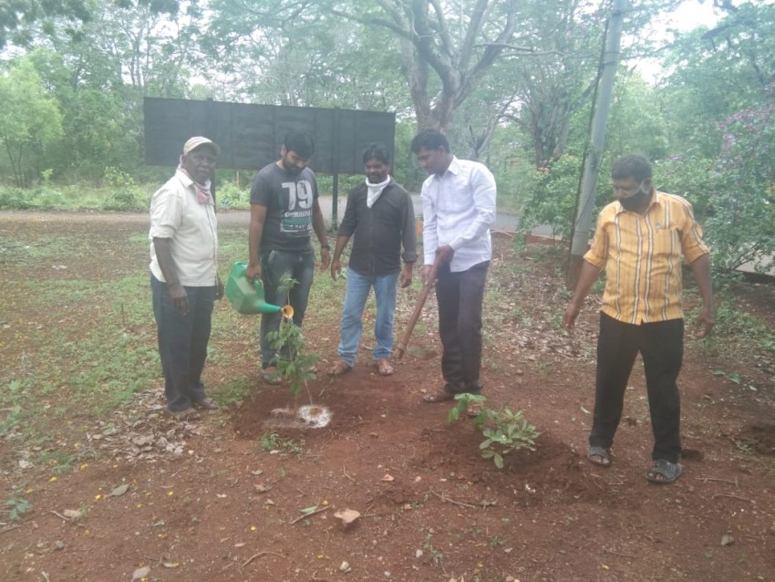 Telangana State Tourism Development Corporation Organized Haritha Haram At Haritha Resorts