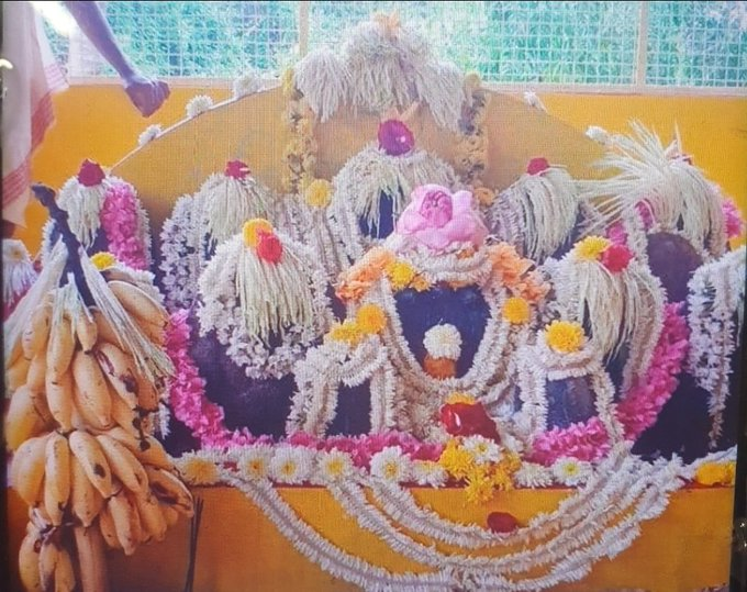 Devotees Offer Prayers On The Occasion Of Nagapanchami Festival 2020
