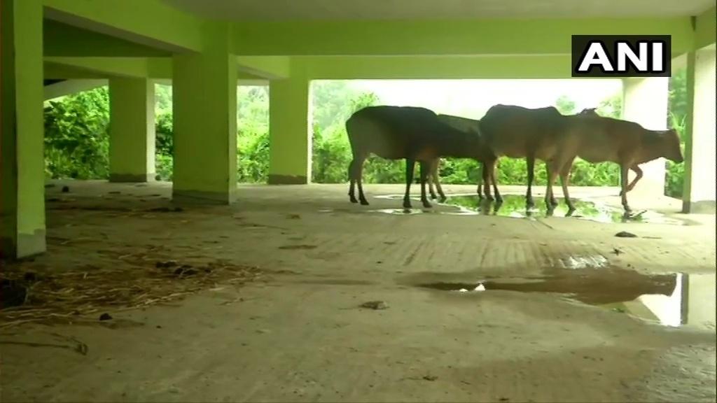 ఒడిషాలో యాస్ తుపాను: సముద్రం అల్లకల్లోలం