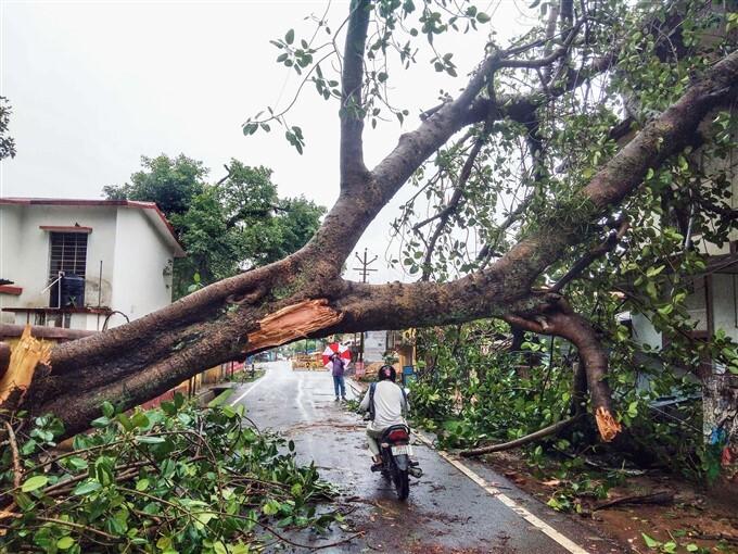 Cyclone Yaas: Heavy Rain Lashes In Jharkhand