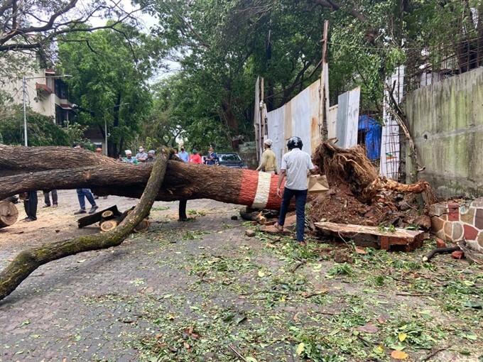 Cyclone Tauktae: Damages Caused Due To Cyclone In Mumabai, Maharashtra