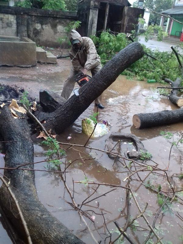 Cyclone Yaas: Damages Caused By Cyclone Yaas In Odisha