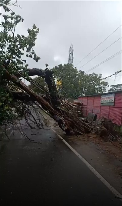 Cyclone Yaas Makes Landfall