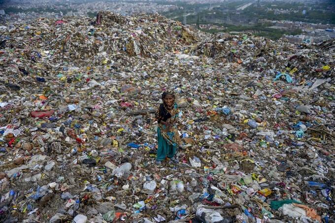 World Environment Day, 2021