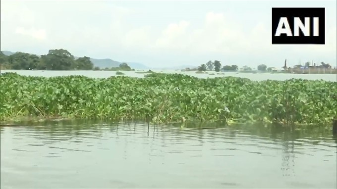 Heavy Rainfall Caused Flooding In Assam
