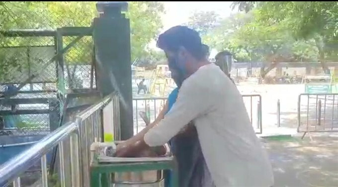 Vandalur Zoo Reopens After 4 Months