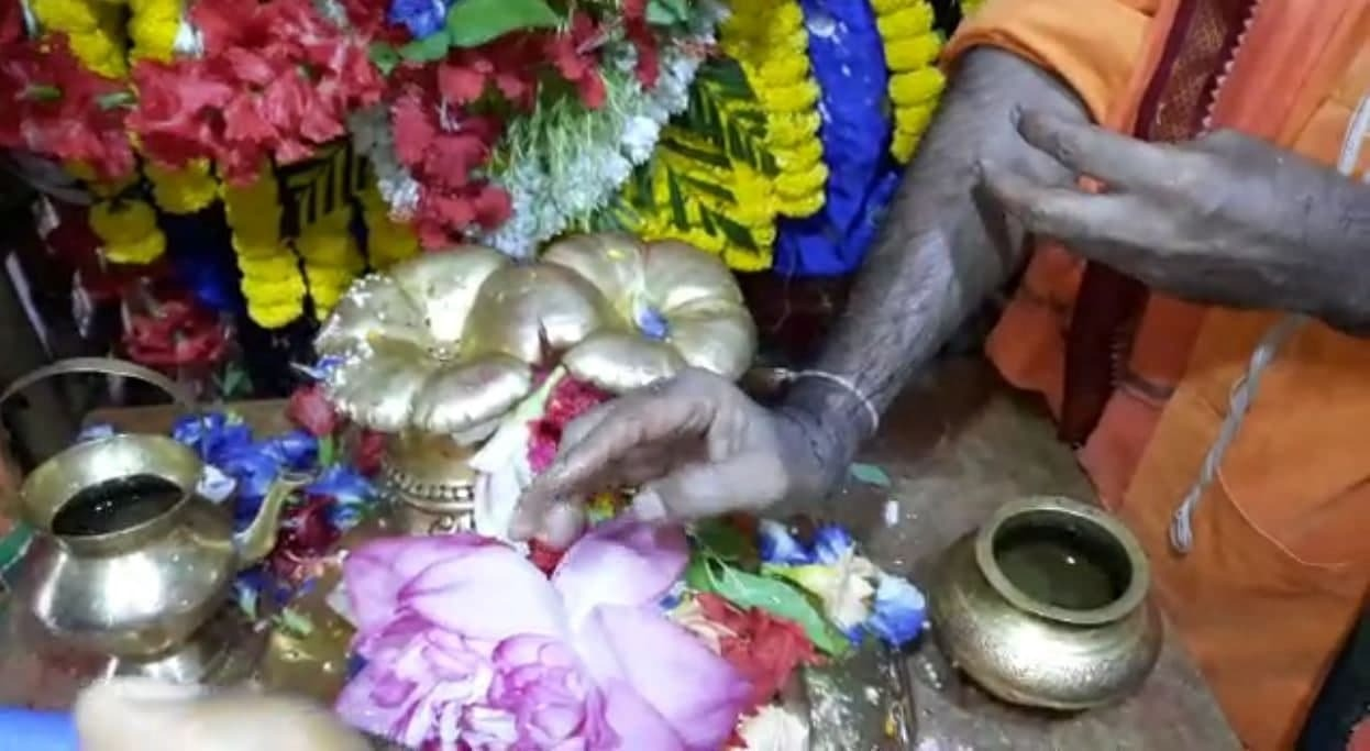 কৌশিকী অমাবস্যা: তারাপীঠে পরম্পরা মেনে শুরু পুজো